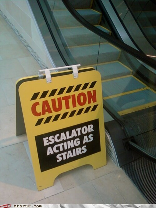 escalator escalator temporarily stairs mitch hedberg stairs - 6213147904