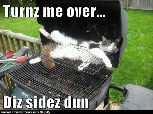 barbecue,bbq,cook,flip,grill,summer