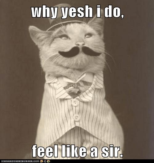 why yesh i do,  feel like a sir.