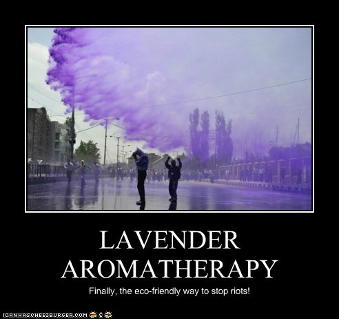 LAVENDER AROMATHERAPY Finally, the eco-friendly way to stop riots!