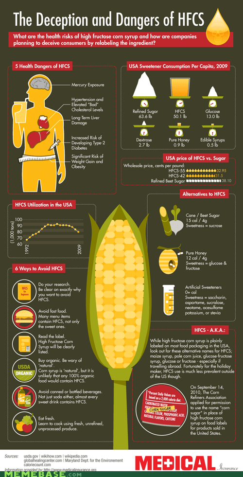 food health high fructose corn syrup infographic sugar - 6213991168