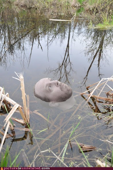 disembodied head,lake,water,wtf