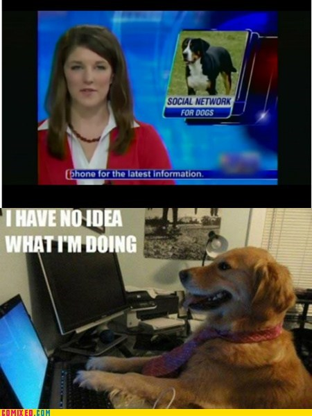dogs,i-have-no-idea-what-im-d,Mark Zuckerberg,pun,social network,the internets