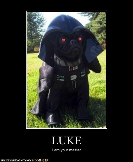 LUKE I am your master