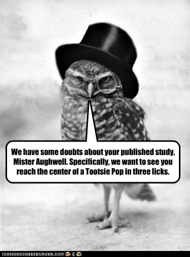 animal funny historic lols Owl Photo - 6214541568