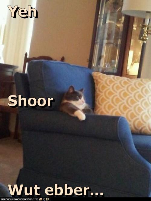 Yeh  Shoor  Wut ebber...