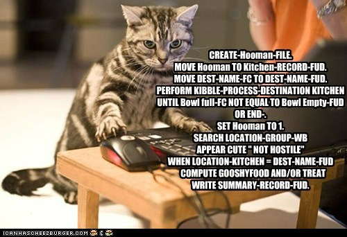 "CREATE-Hooman-FILE. MOVE Hooman TO Kitchen-RECORD-FUD. MOVE DEST-NAME-FC TO DEST-NAME-FUD. PERFORM KIBBLE-PROCESS-DESTINATION KITCHEN UNTIL Bowl full-FC NOT EQUAL TO Bowl Empty-FUD OR END-. SET Hooman TO 1. SEARCH LOCATION-GROUP-WB APPEAR CUTE "" NOT HOSTILE"" WHEN LOCATION-KITCHEN = DEST-NAME-FUD COMPUTE GOOSHYFOOD AND/OR TREAT WRITE SUMMARY-RECORD-FUD."