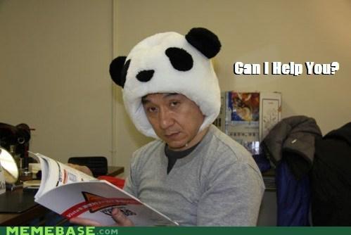 hat interruption Jackie Chan Memes panda reading - 6215587840