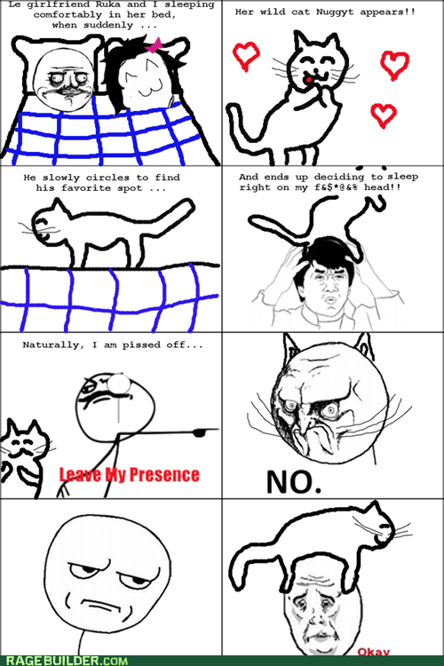 cat,Okay,Rage Comics,relationships