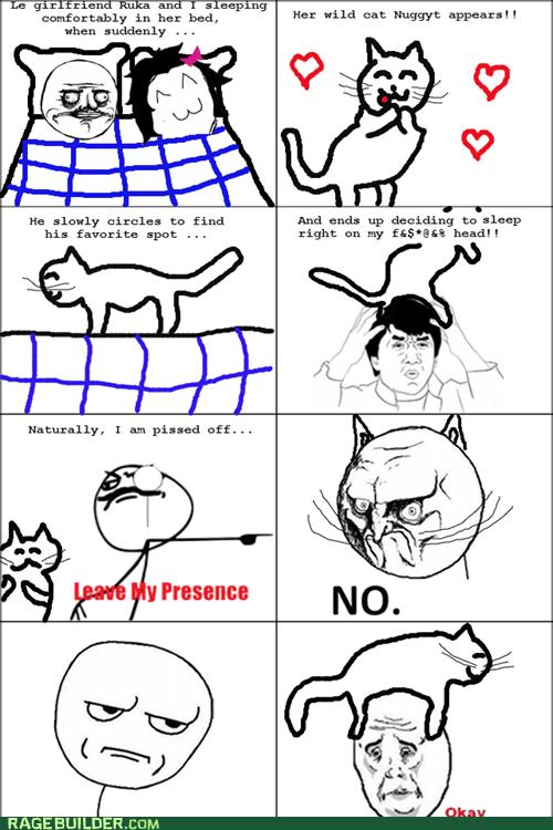 cat Okay Rage Comics relationships - 6215694848