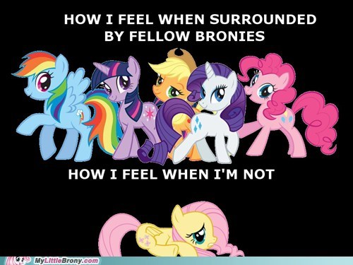 Awkward Bronies fluttershy iron will the internets - 6215994880