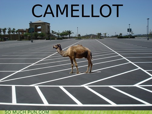 camel,camelot,double meaning,Hall of Fame,literalism,lot