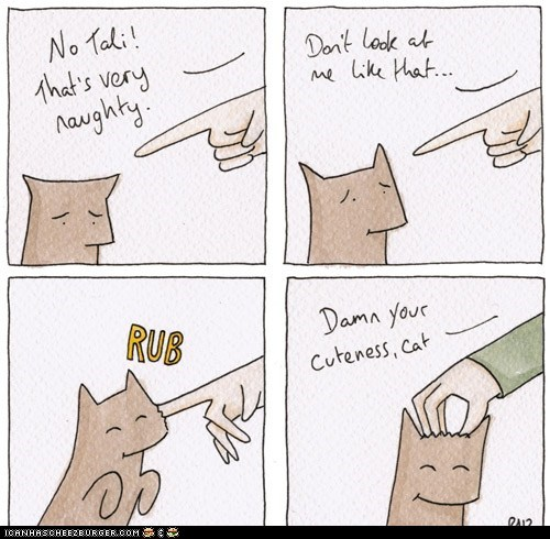cant-stay-mad Cats comic comics damn you fingers naughty - 6217135360