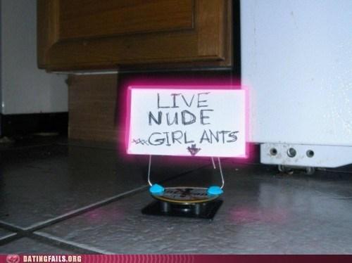 girl ants live nude strip club - 6217170432