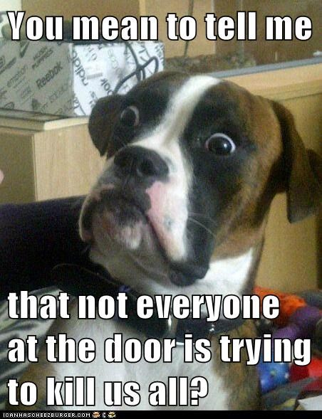Baffled Boxer barking best of the week boxers dogs door Hall of Fame Memes murder surprised - 6217730048