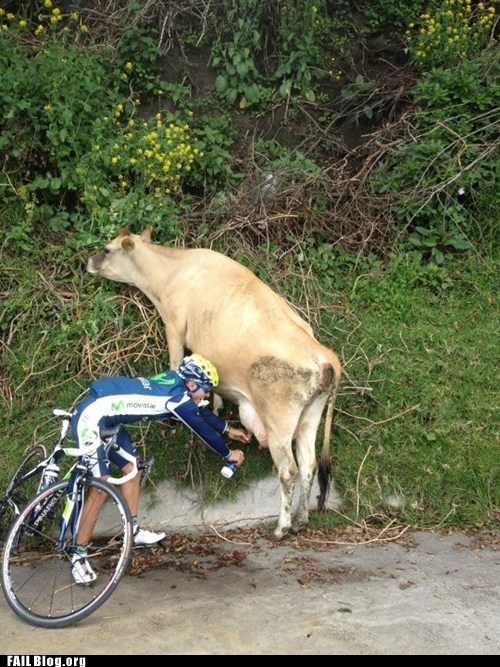 cow,cyclist,fail nation,g rated,milking,water bottle