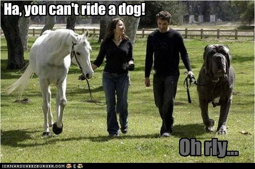 Ha, you can't ride a dog! Oh rly...