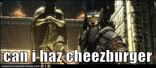 Cheezburger Image 6218342912