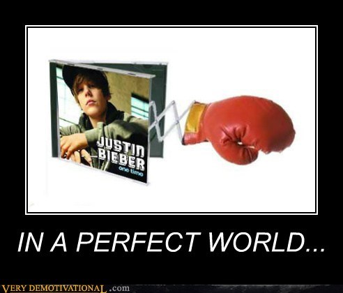 boxing glove hilarious justin beiber perfect world - 6219489024