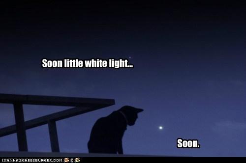dark dot laser night red star white light - 6220119296