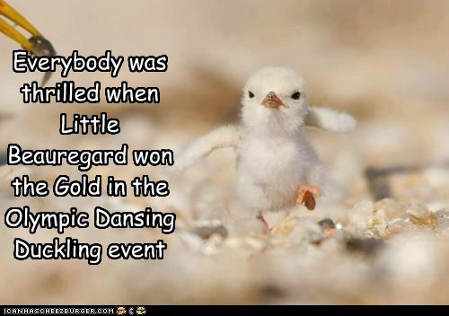Everybody was thrilled when Little Beauregard won the Gold in the Olympic Dansing Duckling event