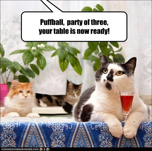 dinner food nom Party restaurant waiter - 6221767168