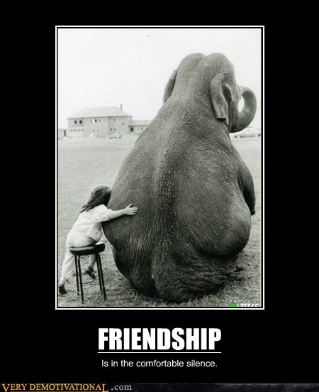 elephant friendship happy hilarious kid - 6222436608