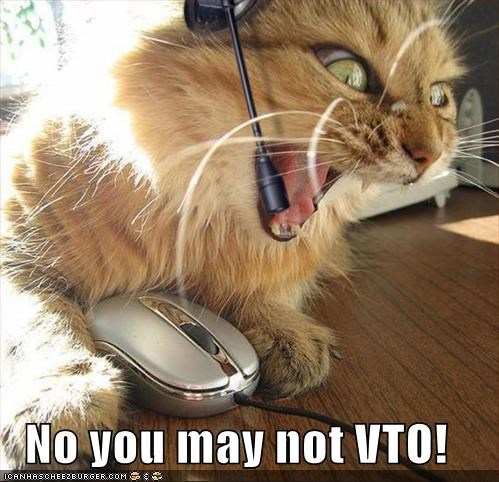 No You May Not Vto Cheezburger Funny Memes Funny Pictures