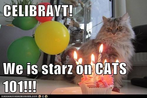 CELIBRAYT!  We is starz on CATS 101!!!