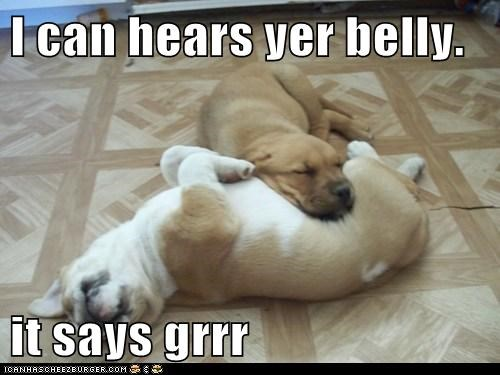 I can hears yer belly. it says grrr