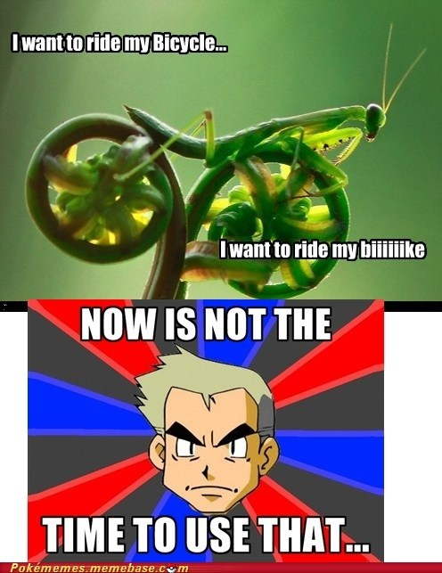 bicycle,Memes,professor oak,queen-praying-mantis