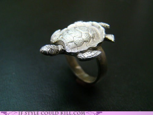cool accessories,ring of the day,rings,turtles