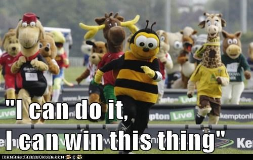 bees,mascots,political pictures,race