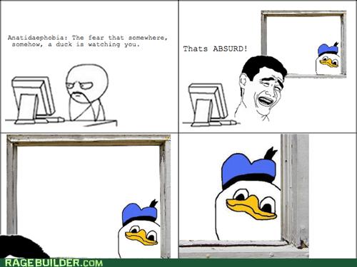 anatidaephobia dolan duck phobia Rage Comics - 6225099776
