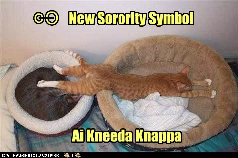 o O ___ New Sorority Symbol Ai Kneeda Knappa