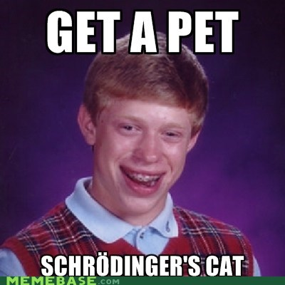 bad luck brian Memes pet shrodingers-cat