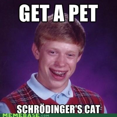 bad luck brian Memes pet shrodingers-cat - 6225334272