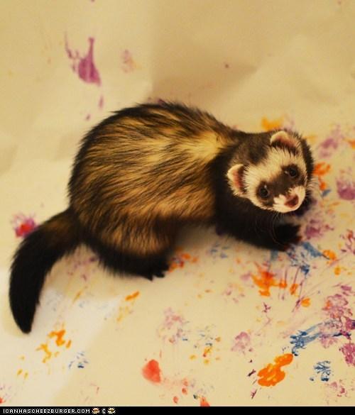 art,artist,ferret,ferrets,finger painting,paint,painter,squee