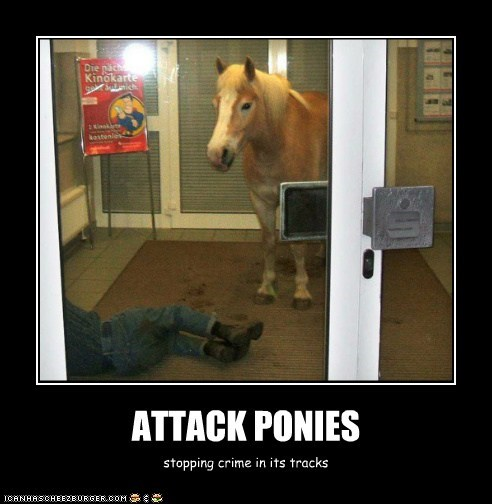 ATTACK PONIES stopping crime in its tracks