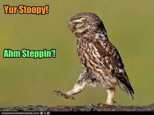 Yur Stoopy! Ahm Steppin'!