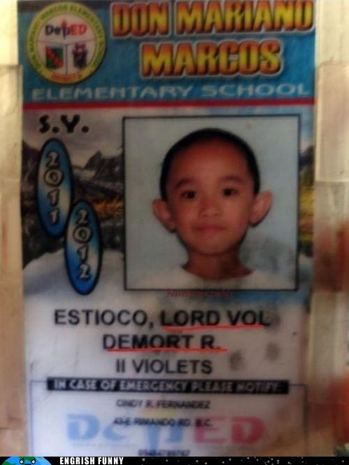 elementary school Harry Potter school id voldemort