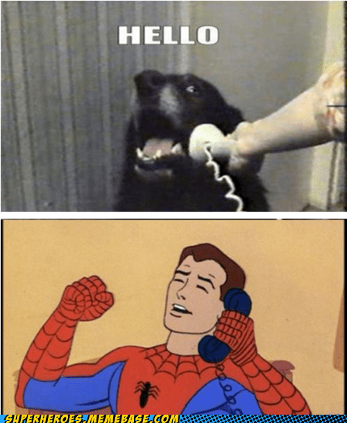 hello phone call Spider-Man Super-Lols this is dog - 6227400448
