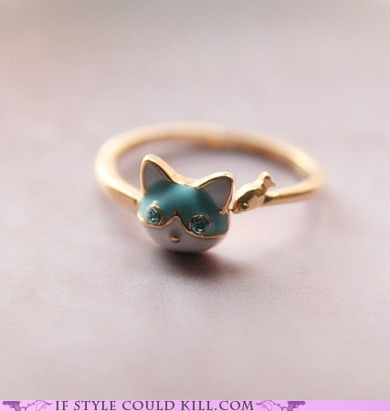 Cats,cool accessories,kittehs,ring of the day,rings