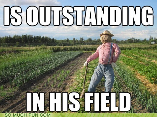 cliché,double meaning,field,Hall of Fame,literalism,out,outstanding,scarecrow,standing