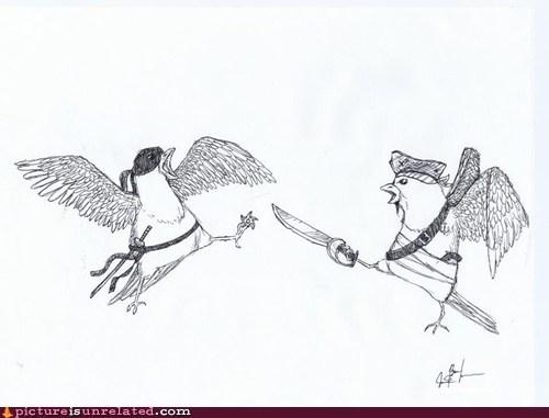 bird drawing nature ninja pigeons Pirate rival wtf - 6228286976