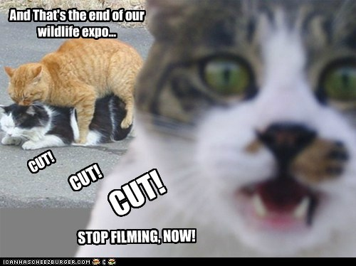 And That's the end of our wildlife expo... CUT! STOP FILMING, NOW! CUT! CUT!