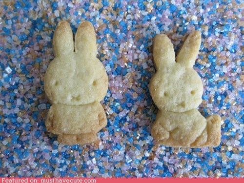 bunny cookies epicute miffy rabbit sugar - 6229601536