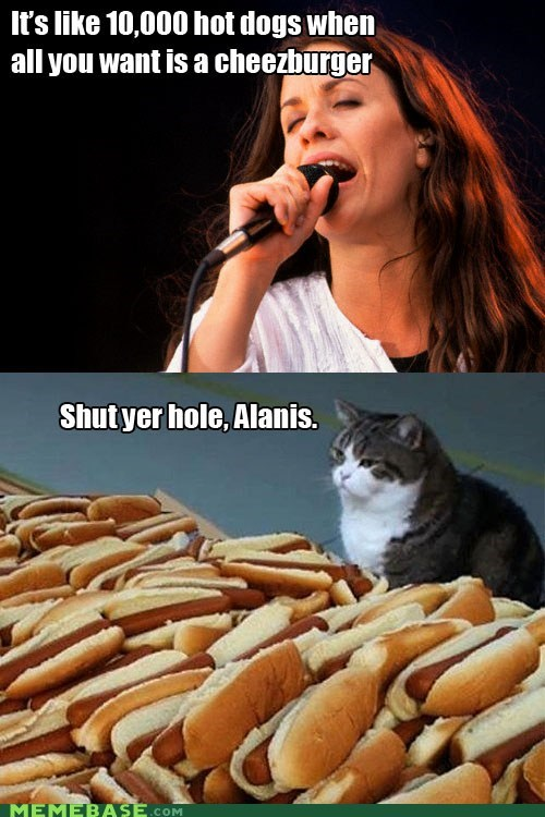 alanis morissette,cheezburger,hot dogs,ironic,Memes