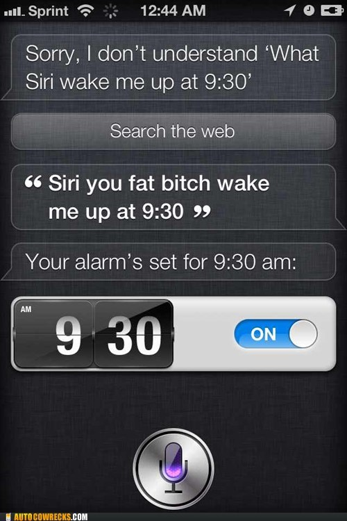 set an alarm,siri,verbal abuse,you-hear-me-know