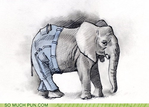 added letter,elephant,elephants,literalism,pants,similar sounding,suffix
